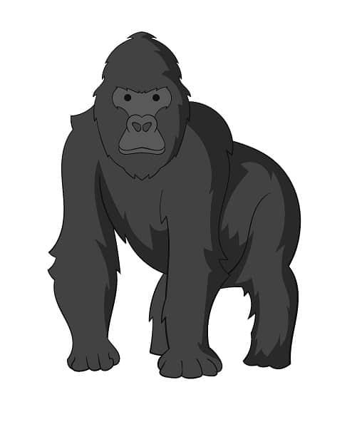 gorila.jpg